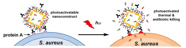New Potent Nanodrug to Combat Antibiotic-Resistant Infections