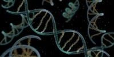 More Ancient Viruses Lurk in Our DNA than We Thought