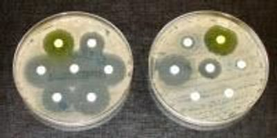 A New Way to Counter Antibiotic Resistance