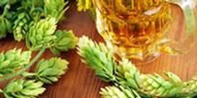 Getting Closer to Using Beer Hops to Fight Disease