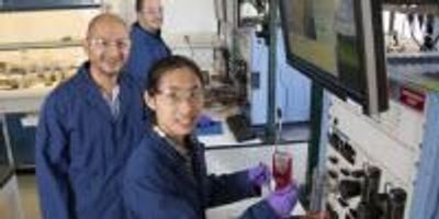 National Laboratories Team up to Develop More Affordable Fuel Cell Components