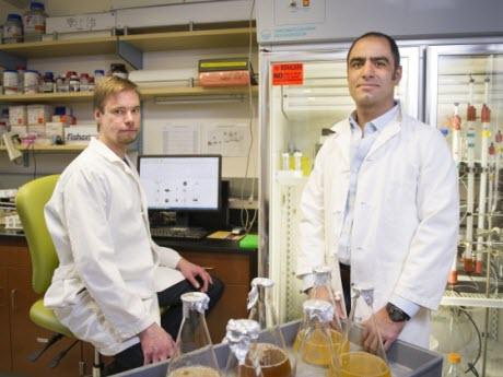Blake Wiedenheft, MSU assistant professor of microbiology and immunology, right, and MSU graduate student Paul B.G. van Erp