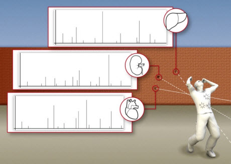 Forensic proteome analysis