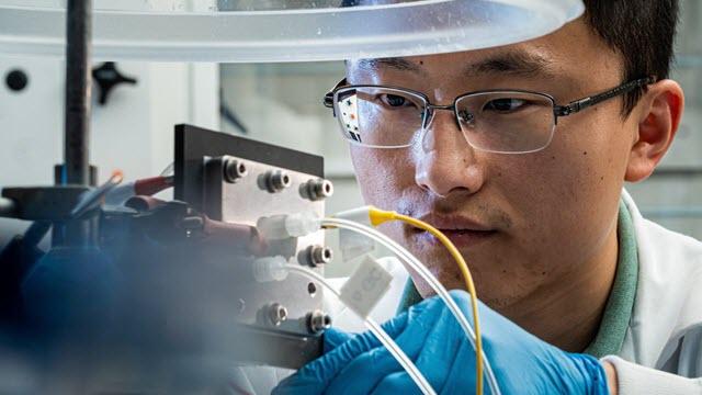 Rice University engineer Haotian Wang