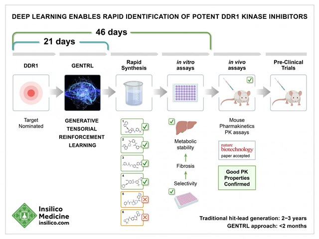 Deep Learning Enables Rapid Identification of Potent DDR1 Kinase Inhibitors