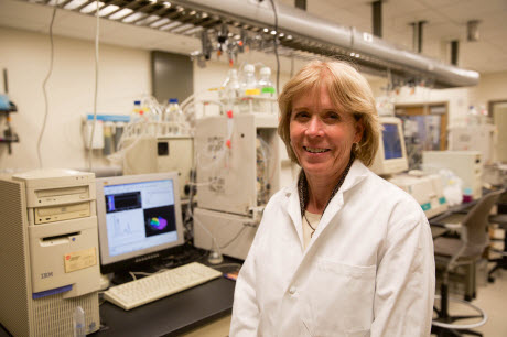 Cynthia Burrows, distinguished professor and chair of chemistry at the University of Utah