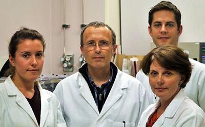 Josie Collins; Professor Keith Jones; Dr Simon Lane; and Dr Julie Merriman