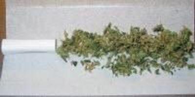 New Group to Study Marijuana Regulation for State of Washington