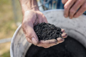 A UD research team is investigating the use of biochar for management of stormwater runoff and pollutants