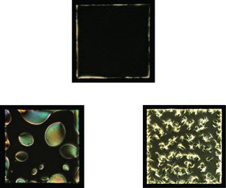 Liquid crystals show potential for detection of neuro-degenerative disease - See more at: http://news.uchicago.edu/article/2015/09/23/liquid-crystals-show-potential-detection-neuro-degenerative-disease#sthash.B400e7JW.dpuf