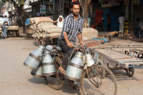 MIT spinout's milk-chillers reduce spoilage and boost yields in villages