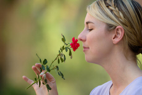 flowering smelling