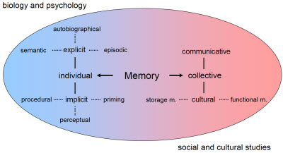Forms and functions of memory