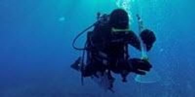 Monitoring CO2 Leakage Sites on the Ocean Floor