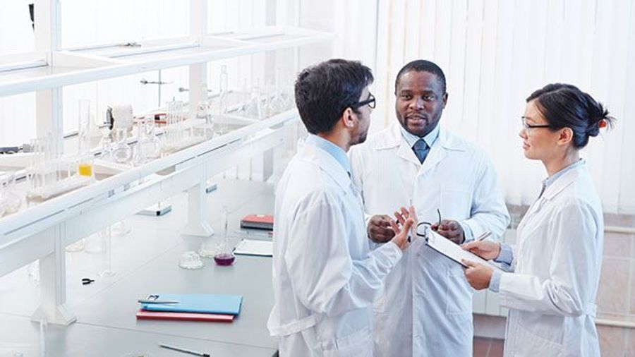 Developing Successful Laboratory Teams