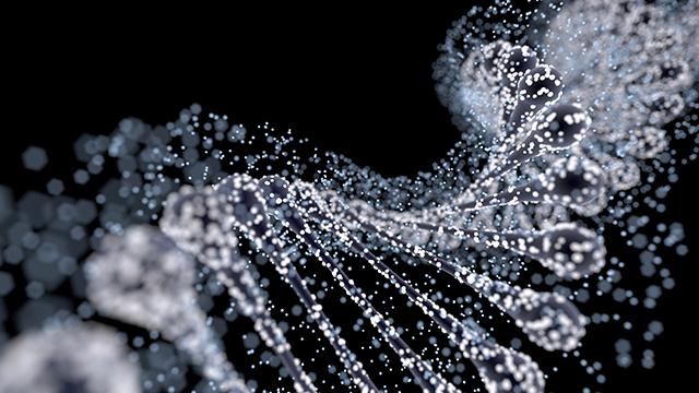 gene characterization