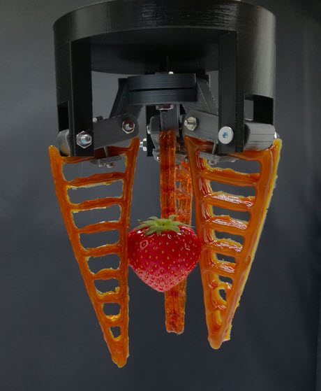 A 3D printed self-healing gripper holding a strawberry.