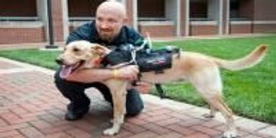 Technology Aims to Improve Communication Between Dogs and Humans