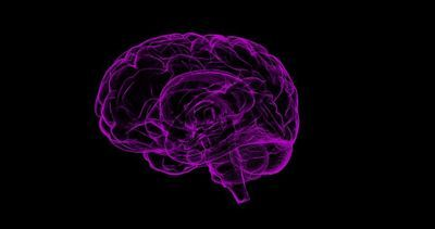 Blood Test to Diagnose Alzheimer's Disease Under Development