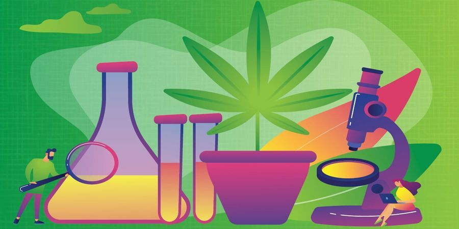 Sample Preparation for Cannabis Testing