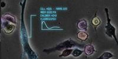 New UC San Diego Biosensor Will Guard Water Supplies from Toxic Threats
