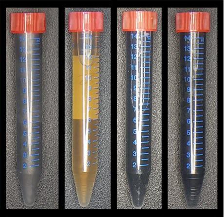 tubes of graphene