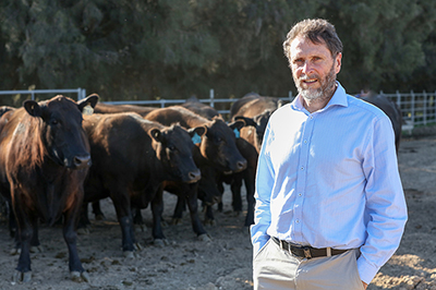 Professor John Williams, University of Adelaide