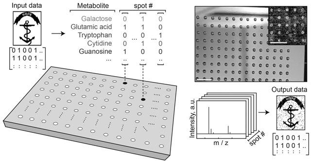 Molecular Data Storage