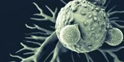 Researchers Identify New Way to Make Cancer Self Destruct