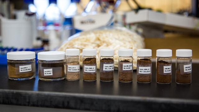 lignin samples