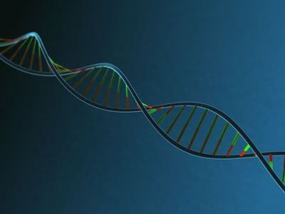 Whole Genome Sequencing Method May Speed Personalized Treatment Of Drug-Resistant Infections