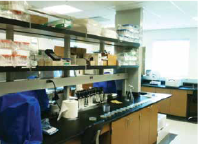 A look inside the Akron cell culture lab