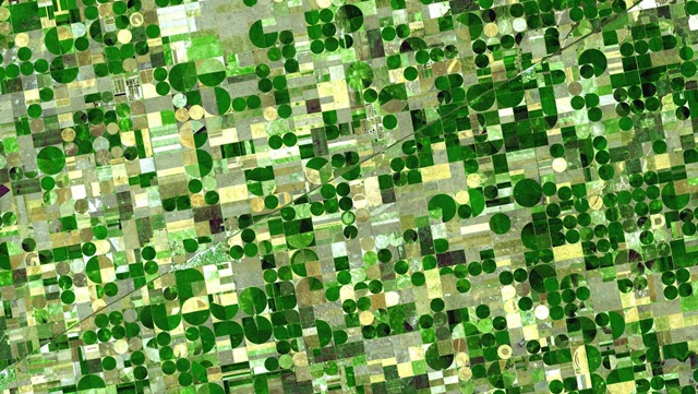 Crops in Southwestern Kansas Watered by Groundwater
