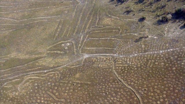 Raised Fields in the Bolivian Llanos de Moxos Region