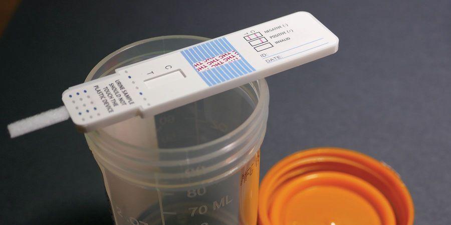 How to Detect Tampered Drug Tests