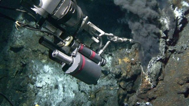 Seafloor Carbon