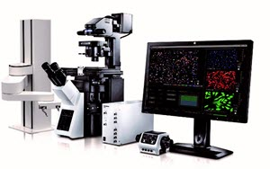 Olympus ScanR Modular High-Content Screening Station for Life Sciences