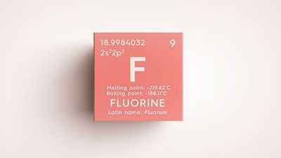 Fluorine NMR: An Overlooked Nucleotide Comes into Its Own