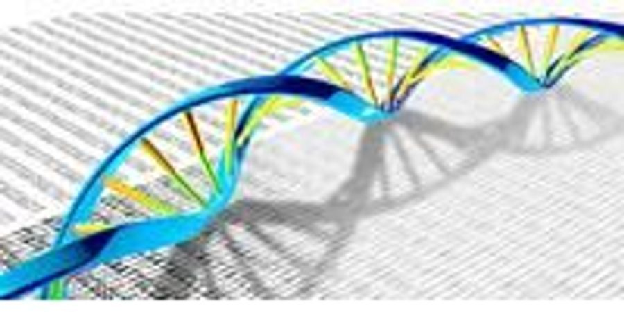 A Treasure Map to Understanding Epigenetic Causes of Disease