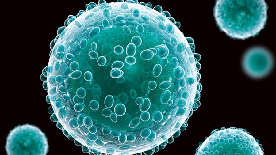 In Three Dimensions: A Cell Culture Revolution