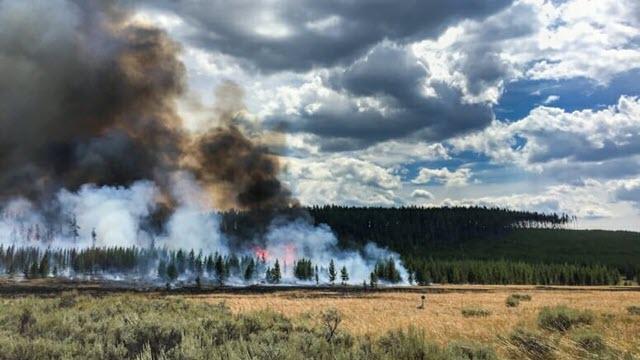 yellowstone-fire