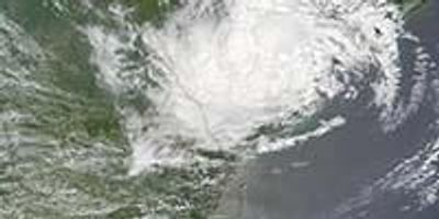 Laboratory Disaster Planning: Lessons Learned from 2001 Tropical Storm Allison