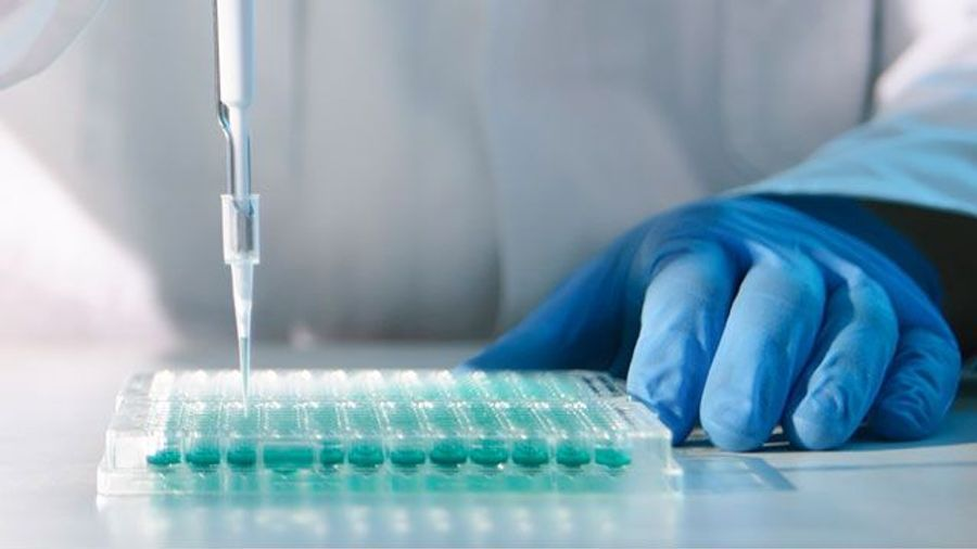 What to Know When Choosing Microplates