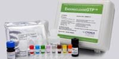 New Kit Identifies Endonuclease Impurities in Gene Therapy and Vaccine Development