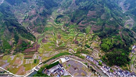A Fragmented Habitat Caused by Intense Human Utilization in Zhejiang Province, China