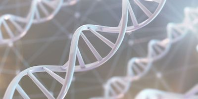 Hope for Patients with a Rare Genetic Condition Linked to Severe Infections