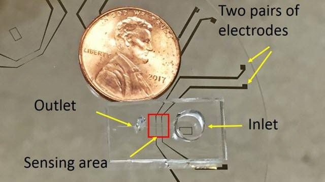 New Tool Portable Analyzes Microbes