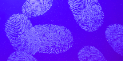 Experimental Fingerprint Test Can Distinguish between Those Who Have Taken or Handled Cocaine