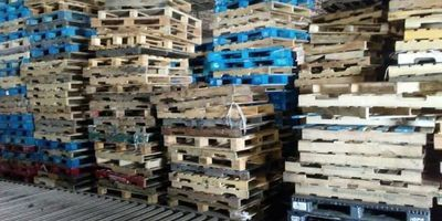 Wooden Pallets Are More Eco-Friendly Than Plastic Pallets, Research Finds