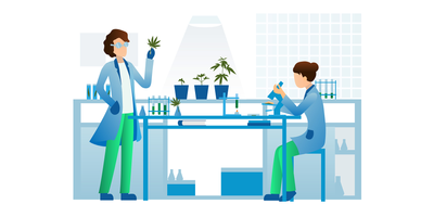 Designing a Cannabis Research Lab